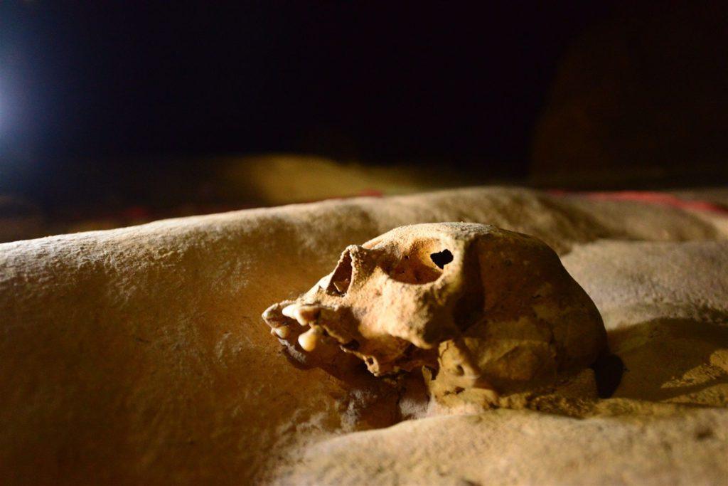 actun-tunichil-muknal-cave-in-belize