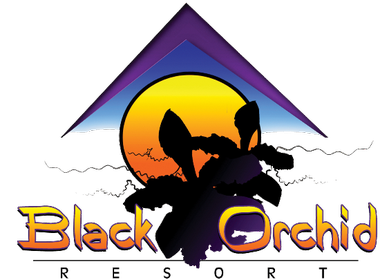 blackorchid-logo-png-389x280