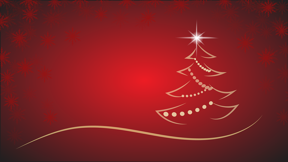 5 Reasons Why Black Orchid Resort is The Perfect Christmas Party Venue for The Festive Season